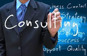 consultant 1