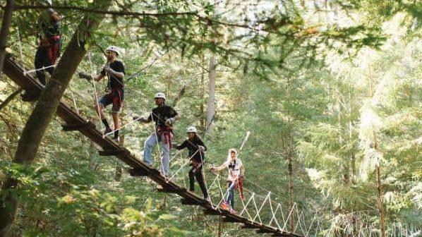 Sonoma canopy zip line