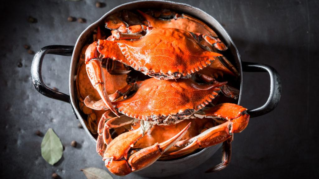 crab in pot